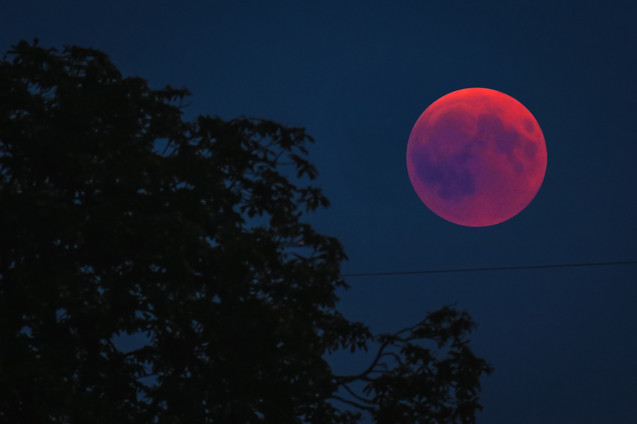 blood moon january 2019 new jersey - photo #15